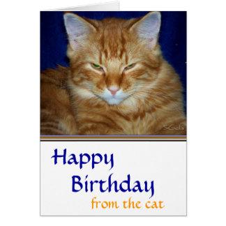 Tarjeta de cumpleaños gruñona del gato de Tabby