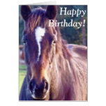 Tarjeta de cumpleaños hermosa del caballo