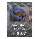 Tarjeta de cumpleaños inglesa divertida del dogo