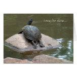 tarjeta de cumpleaños lenta de la tortuga