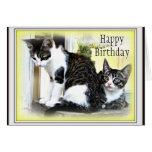 Tarjeta de cumpleaños linda de dos gatitos