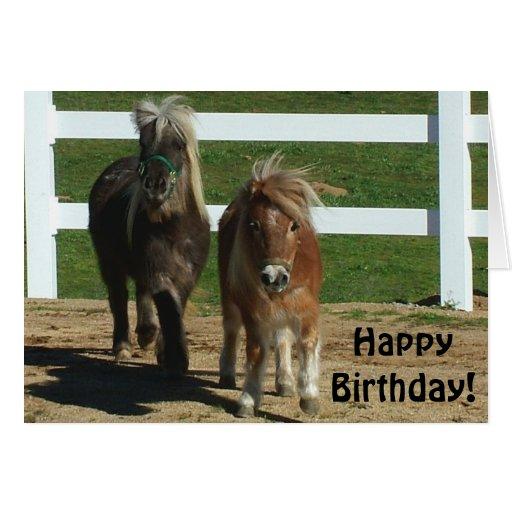 Tarjeta de cumpleaños miniatura linda del caballo | Zazzle