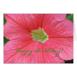 ¡Tarjeta de cumpleaños - petunia rosada brillante!
