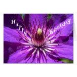 Tarjeta de cumpleaños púrpura de la flor de la pas