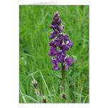 tarjeta de cumpleaños púrpura de la orquídea