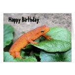 Tarjeta de cumpleaños roja de la naturaleza del