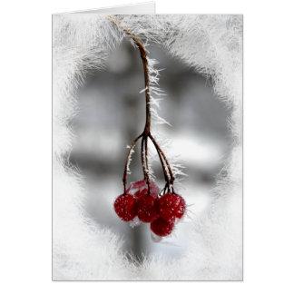 Tarjeta de cumpleaños roja del navidad de la baya
