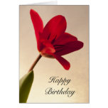Tarjeta de cumpleaños roja elegante del tulipán