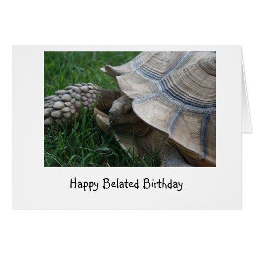 Tarjeta de cumpleaños tardía de la tortuga