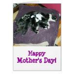Tarjeta de Día-Boston Terrier de la madre