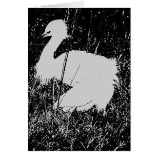 Tarjeta de dos Egrets