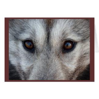 Tarjeta de encargo del perrito de lobo de trineo