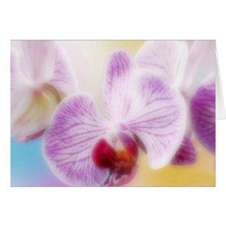 Tarjeta de enhorabuena con orquídeas pinkfarbenen