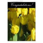 Tarjeta de felicitación amarilla del tulipán de la