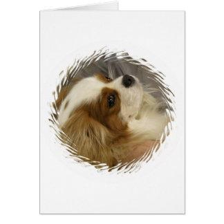 Tarjeta de felicitación arrogante del perro de agu