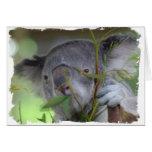 Tarjeta de felicitación australiana de la koala