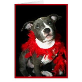 Tarjeta de felicitación azul del perrito de Pitbul