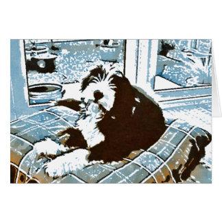Tarjeta de felicitación barbuda del perrito del co