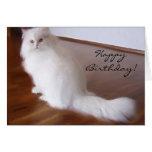 Tarjeta de felicitación blanca del gato persa del