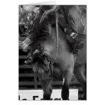 Tarjeta de felicitación blanco y negro del caballo