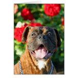 Tarjeta de felicitación Brindle del perro del boxe