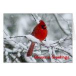 Tarjeta de felicitación cardinal roja del navidad