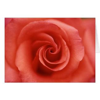Tarjeta de felicitación color de rosa