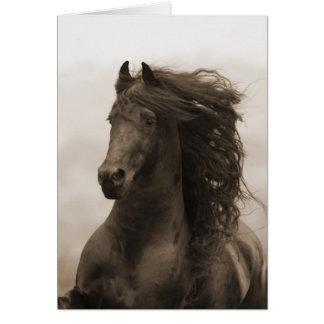Tarjeta de felicitación corriente frisia del cabal