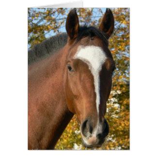 Tarjeta de felicitación cuarta del caballo