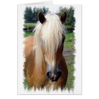 Tarjeta de felicitación cuarta del caballo del Pal