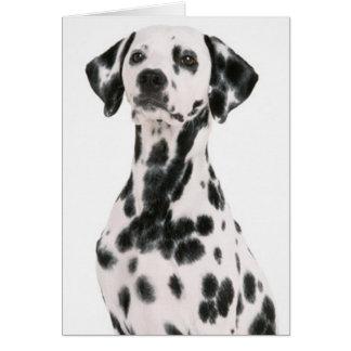 Tarjeta de felicitación dálmata del perro manchado