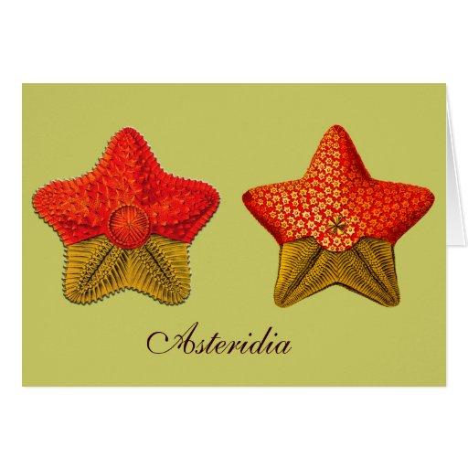 Tarjeta de felicitación de Asteridia (estrella de