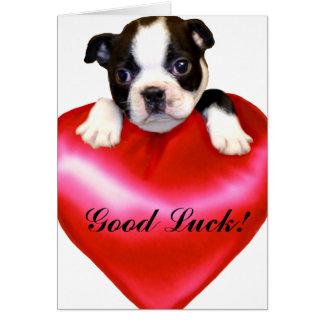 Tarjeta de felicitación de Boston Terrier de la bu