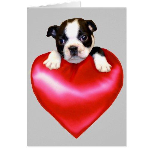 Tarjeta de felicitación de Boston Terrier del amor