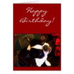 Tarjeta de felicitación de Boston Terrier del feli