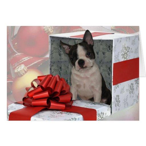 Tarjeta de felicitación de Boston Terrier del navi