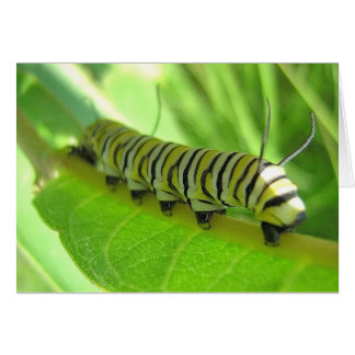 Tarjeta de felicitación de Caterpillar