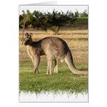 Tarjeta de felicitación de imagen del canguro