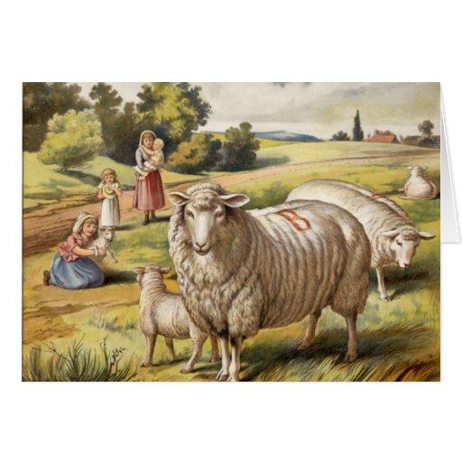 Tarjeta de felicitación de InMeadow de las ovejas