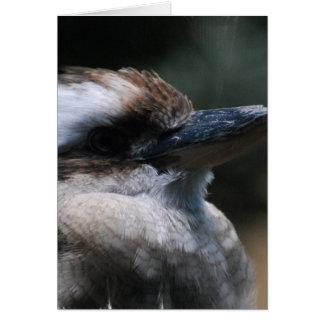 Tarjeta de felicitación de Kookaburra