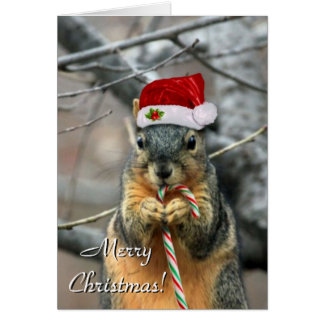Tarjeta de felicitación de la ardilla del navidad