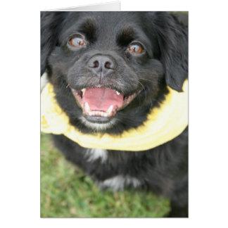 Tarjeta de felicitación de la cara del perro
