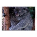 Tarjeta de felicitación de la familia de la koala