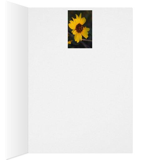 Tarjeta de felicitación de la flor de Sun