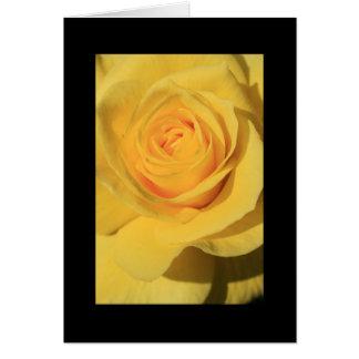 Tarjeta de felicitación de la flor del rosa amaril