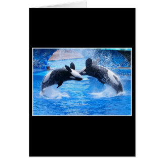 Tarjeta de felicitación de la foto de la ballena