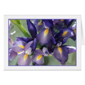 Tarjeta de felicitación de la foto del iris de la