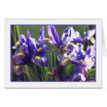 Tarjeta de felicitación de la foto del iris del