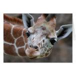 Tarjeta de felicitación de la jirafa