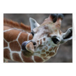 Tarjeta de felicitación de la lengua de la jirafa